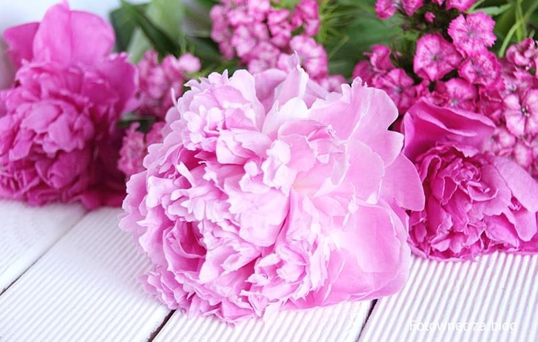 jak przedłużyć życie ciętym kwiatom